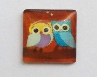 square cabochon, 20mm, 2 adorable owls