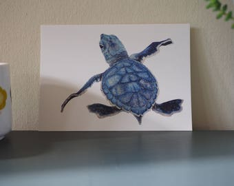 Green Turtle Baby Postcard