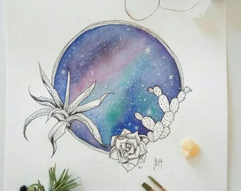 Galaxy with succulents