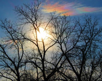 Nature Photography, Wall Art, Sunshine Through Tree, Rainbow Cloud, Digital Download, home decor, mother's day gift,cabin decor,nature print