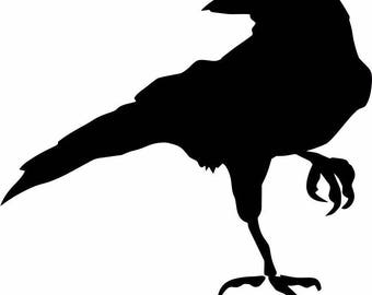 Crow Raven Blackbird Vinyl Decal