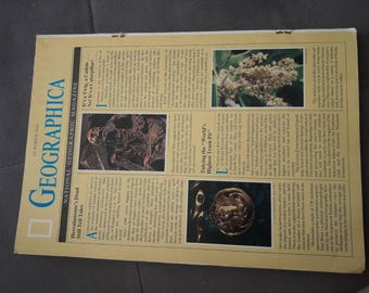 National Geographic October 1989