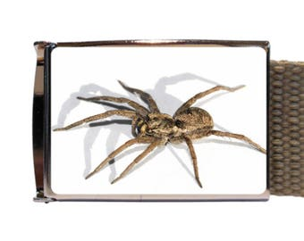 Spider Belt Canvas belt new with spider