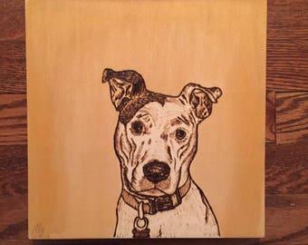 Wood Burned Pet Portraits
