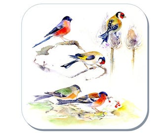 Finches - Bird Coaster (Corked Back). From an original Sheila Gill Watercolour Painting