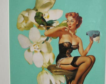 Pin up with parrot