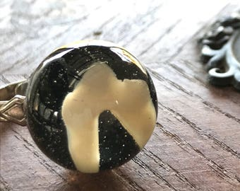 Coyote tooth ring