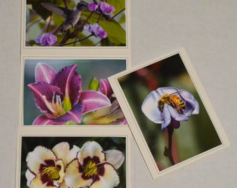 Positively Purple - 4 Fine Art Handmade Photo Greeting Cards, Hummingbird and Flower Notecards, Handmade Hummingbird & Flower Stationary