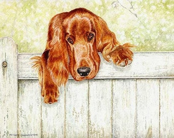 Fence Talker A Limited Edition Irish Setter Print