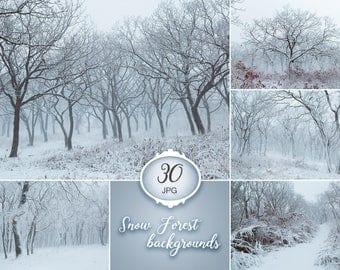 30 Winter backdrops, Winter digital background, snowy background, winter forest photo, snow forest backdrop, Christmas background, snowfall