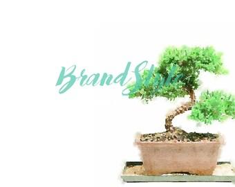 Bonsai Watercolor Stock Digital Download