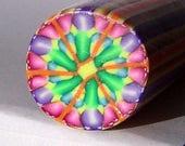 Raw Polymer Clay Kaleidoscope Round Cane Raw Unbaked Colorful