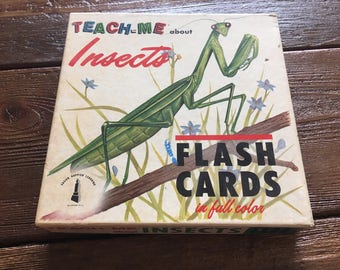 48 Vintage insect flashcards 1962 small prints bugs Teach Me About Insects