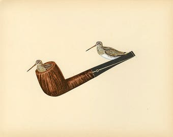 Snipe pipe. Original collage by Vivienne Strauss.