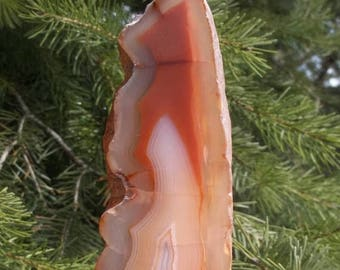 45% off Large Standing Agate Slice, Polished with Raw Edges