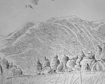Hill in Sylva