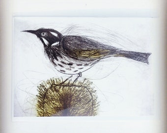 Set of five new greeting cards by Bridget Farmer