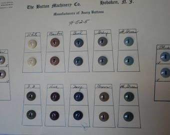 Lot of 24 VINTAGE Dyed Sew Thru Vegetable Ivory or Tagua Nut Salesman Sample Card BUTTONS  105