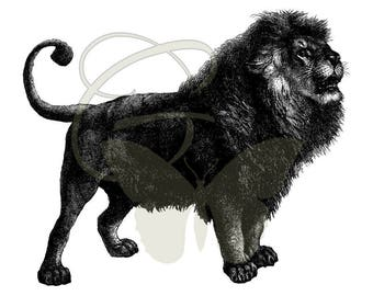 Digital Lion Old Illustration Download Crafting Image Transfer Artwork Printable Clip Art