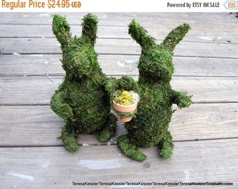 Save25% 2 Moss covered Rabbit-Eater Bunny-Rabbit sculpture-Preserved Moss-