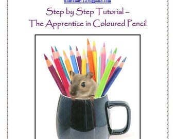 Step by Step Tutorial - The Apprentice in Coloured Pencil
