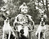 Antique dog photograph, Antique photograph toddler with dogs, Antique child with dog photo, French dog photo, Antique rat terrier dog photo