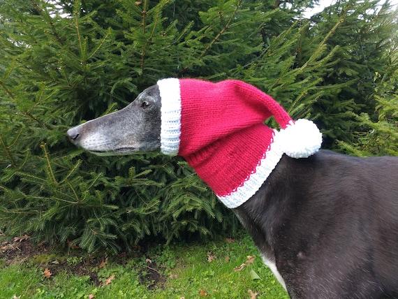 Greyhound  Galgo Santa Hat