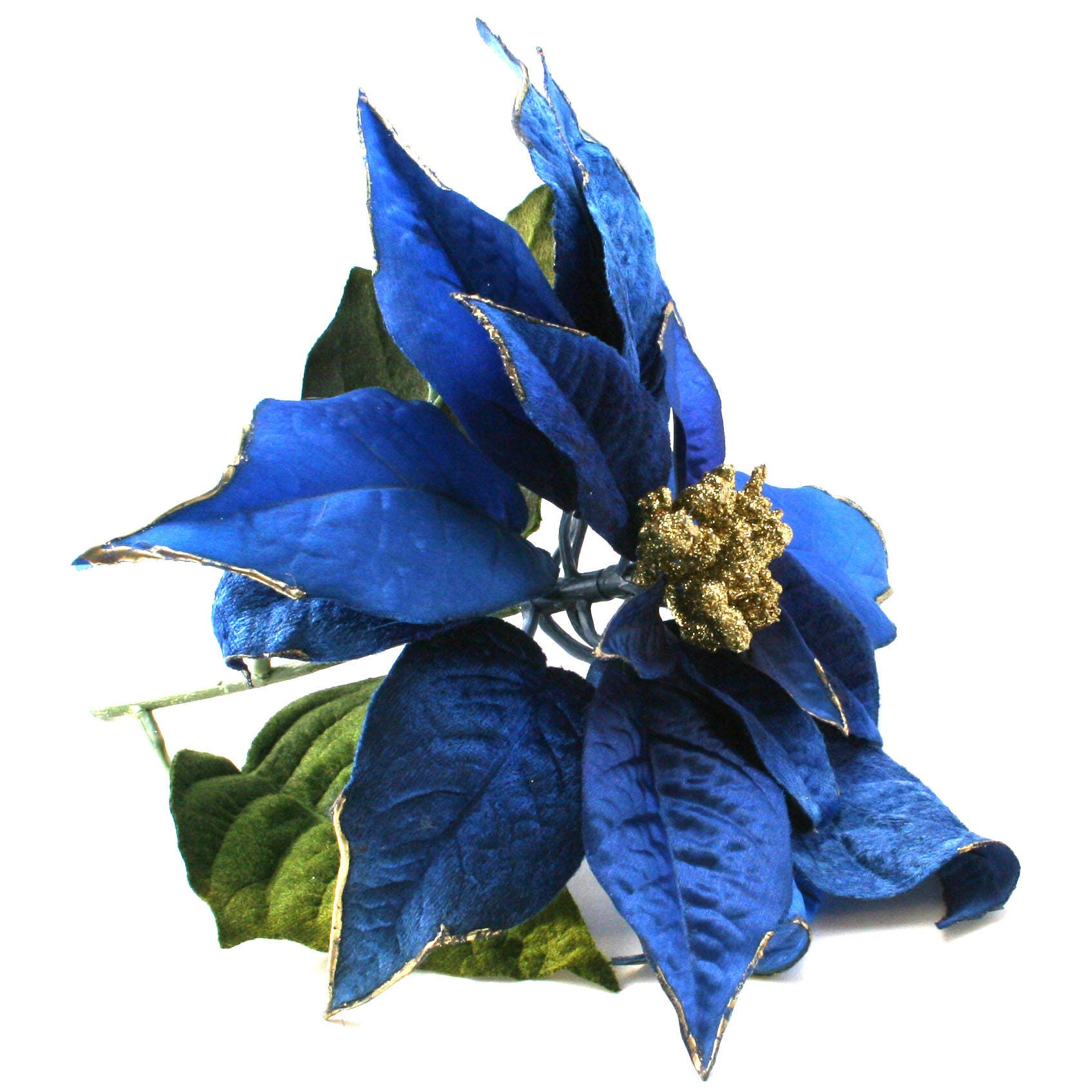 blue flowers at christmas