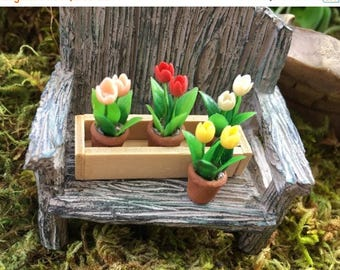 SALE Miniature Tulips in Window Box, Removable Flower Pots, Dollhouse Miniature, 1:12 Scale, Miniature Flowers, Miniature Gardening, Accesso