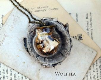 mole skull terrarium necklace