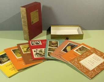 National Audubon Society Nature Program 1956 USA 8 Child Adult Activity Booklets Slipcase Box Set w/ Sticker 1950s Educational Environmental