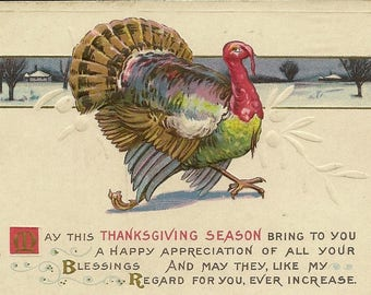 Unused Embossed Antique Thanksgiving Postcard Stecher Litho Turkey Tom Winter Scene and Thoughtful Thanksgiving Greeting