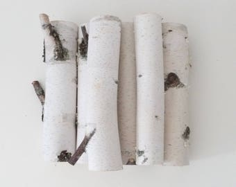 natural white birch branches-set of 8,  make your own birch wall art, diy projects, rustic branches, rustic wedding, wood craft