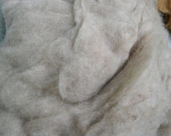Bergschaf wool uk, natural beige, needle felting, carded bergschaf wool for felting