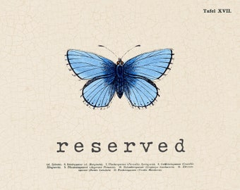 Reserved for Tracy