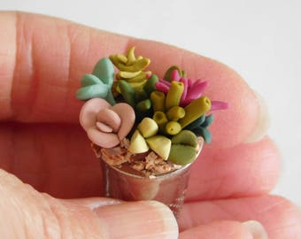 Mini Succulents, polymer clay succulents, artificial plants, miniature dollhouse decor