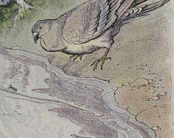 """mystery yarn box . Aesops fables """"The dove and the ant"""""""