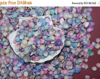 12% OFF 1 lb Dyed CAP SHELLS, Craft Supplies, Art and School Supplies, Vacation Bible School Supplies