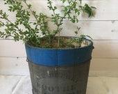 Vintage Sap Bucket II