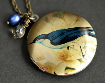 Bluejay Locket Necklace. Blue Bird Necklace with Taupe Teardrop and Cobalt Blue Fresh Water Pearl. Bluebird Necklace. Handmade Jewelry.