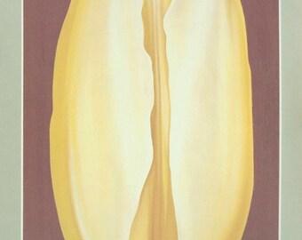 Lowell Nesbitt-Yellow Tulip-1976 Poster