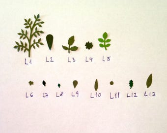 L7. Miniature green paper leaves for making dollshouse flowers