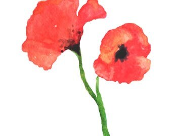 Red Poppy Watercolor Print