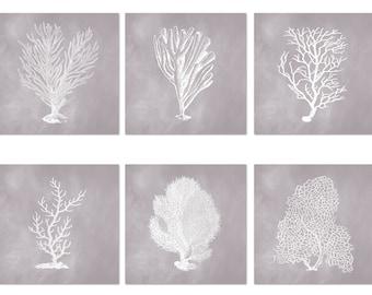 Coastal Print Set of 6, Square Prints, Coral Prints, Corals in Gull Gray, Posters, Coastal Wall Art, Beach Decor, Shore House Decor