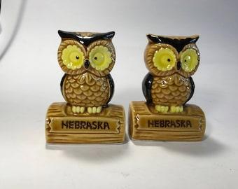 Owl Salt and Pepper Shakers Souvenir from Nebraska Sitting On Log Japan Plastic Plugs