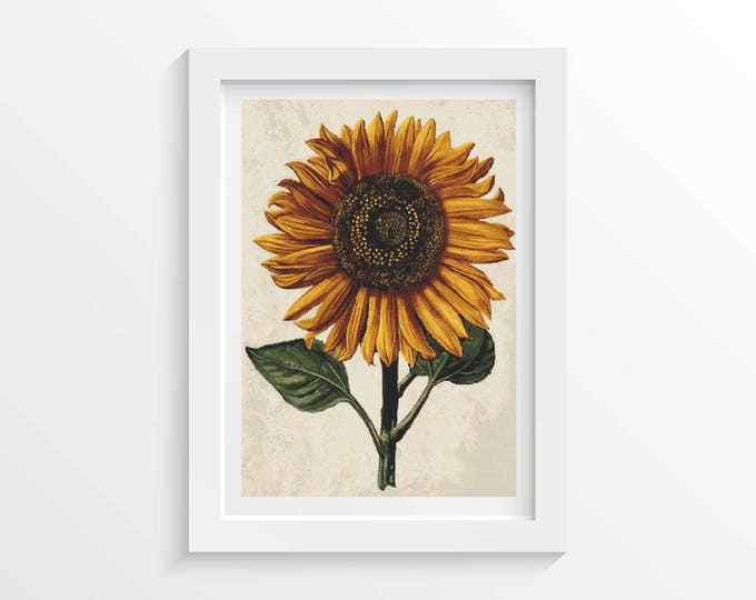 Cross Stitch Pattern PDF, Embroidery Chart, Art Cross Stitch, Floral Cross Stitch, Sunflower with Background by Daniel Froesch (FROES03)