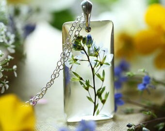 Germander Speedwell pendant, real wildflower necklace, resin flower necklace, something blue, pale blue flower, real plant jewellery