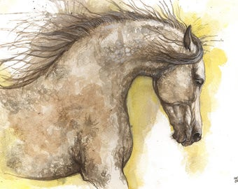 Arabian horse, equine art, horse portrait, equestrian, original watercolor painting