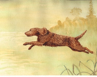 American Water Spaniel Spirit print (8 x 10 inch) by Constance Rutherford