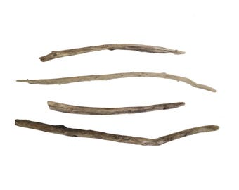 Natural Driftwood Long Stems Sticks Set of 4